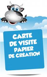 cartes de visite sur papier de création