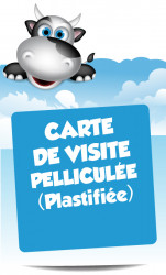 Cartes de visite pelliculées (plastifiées)