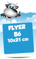 Flyer B6 10x21 cm