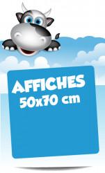 Affiches 50x70 cm