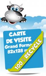 Cartes de visite Grand Format. Papier 100% recyclé