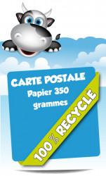 Cartes postales. Papier 100% recyclé.